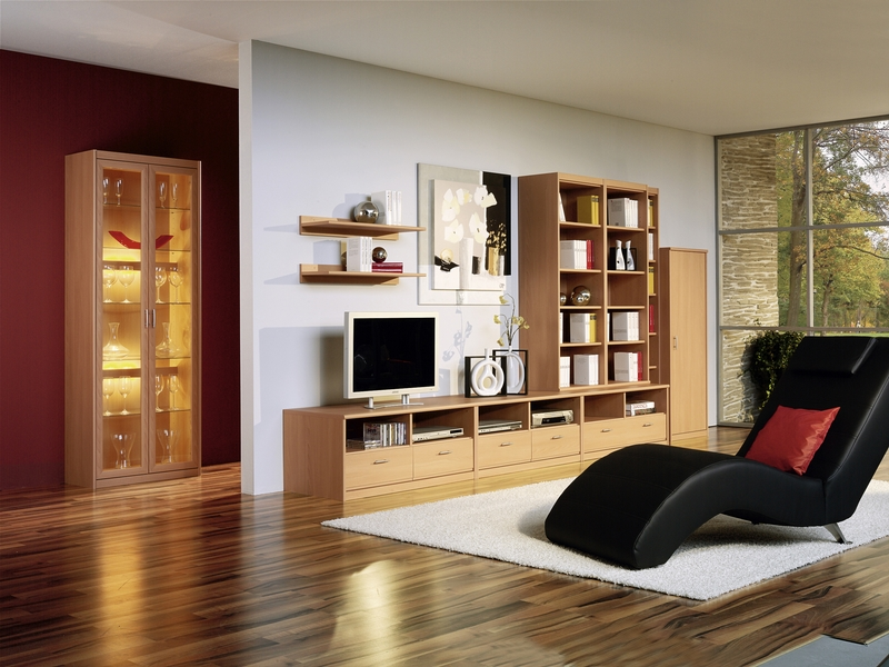 Contemporary Living Room With Chaiselounge And Wood Cabinets