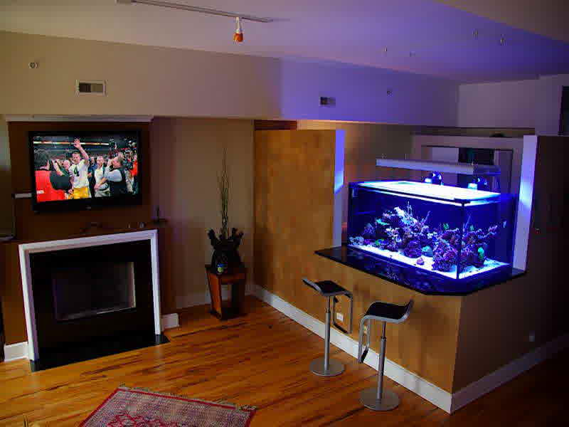 Modern Bar Aquarium In Living Room (Photo 2 Of 21)