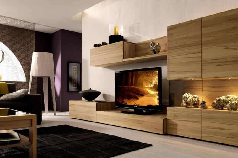 enclosed tv cabinet storage