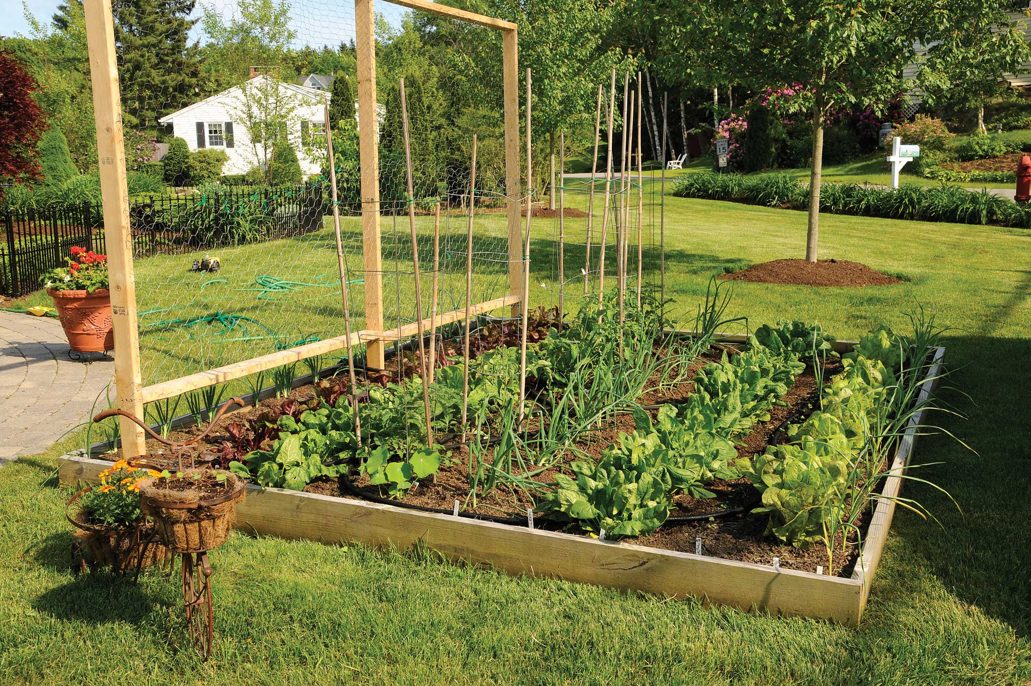 Beautiful Raised Bed Gardening Ideas