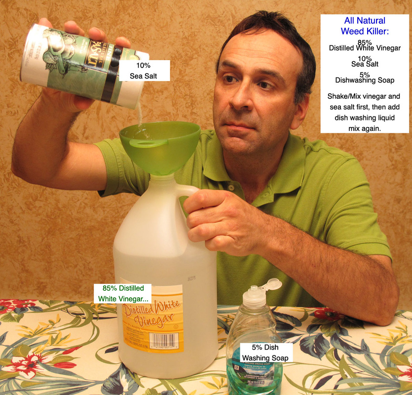 Guide Homemade Best Weed Killer For Lawns (Image 6 of 10)