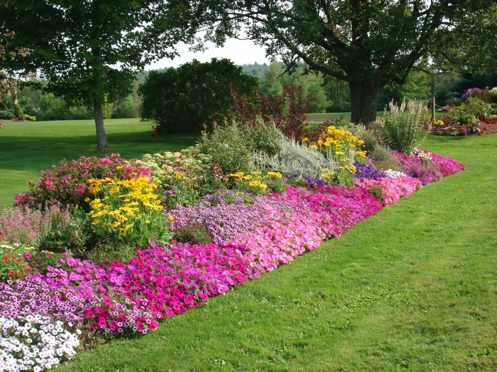 Impressive Flower Bed Border Ideas (Image 6 of 10)