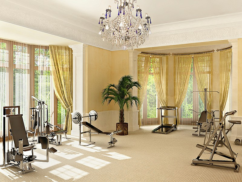 Luxury Designing Gym Room in Home