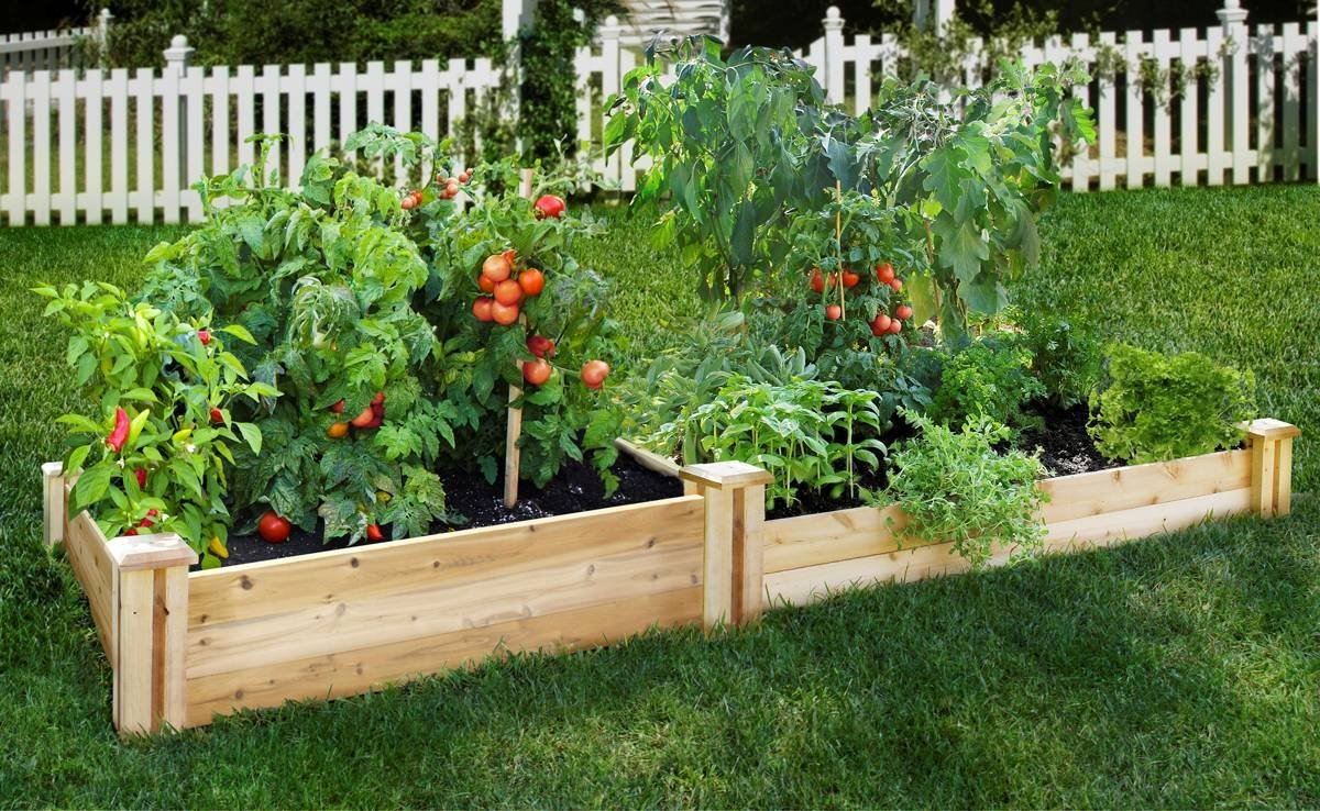 Potting Soil Vegetable Gardening In A Raised Bed