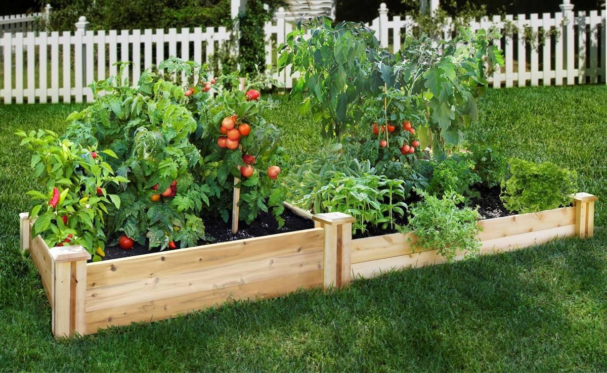 Potting Soil Vegetable Gardening In A Raised Bed
