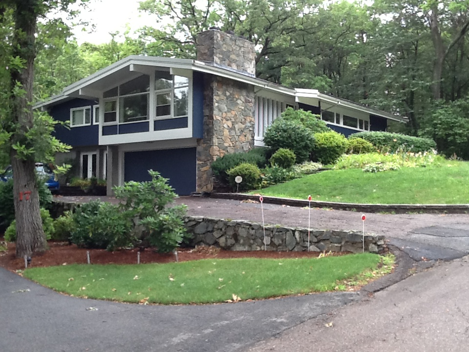 Cool Metropolis Mid Century Modern Homes With Green Yard (View 4 of 10)