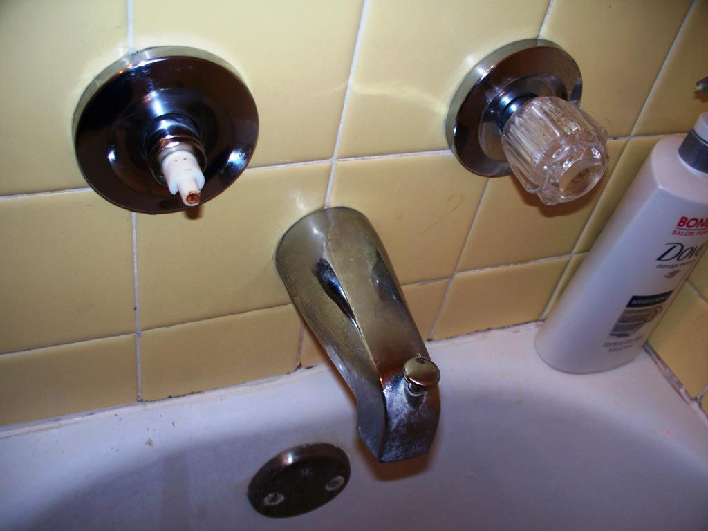 Fix Leaky Shower Faucet (Image 3 of 10)