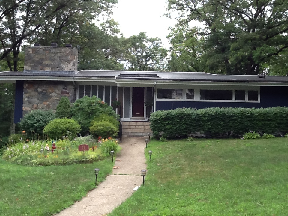 Metropolis Mid Century Modern Homes With Green Yard (View 9 of 10)
