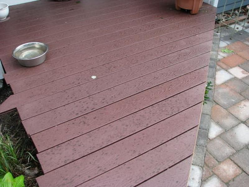 Trex Black Mold Decking Problems