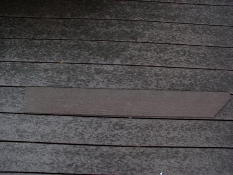 Trex Decking Mold Problems (Image 6 of 10)