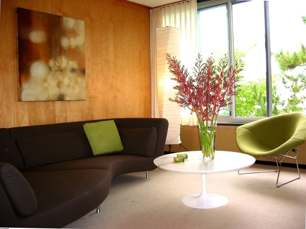 Contemporary Sofas Choices for Living Room