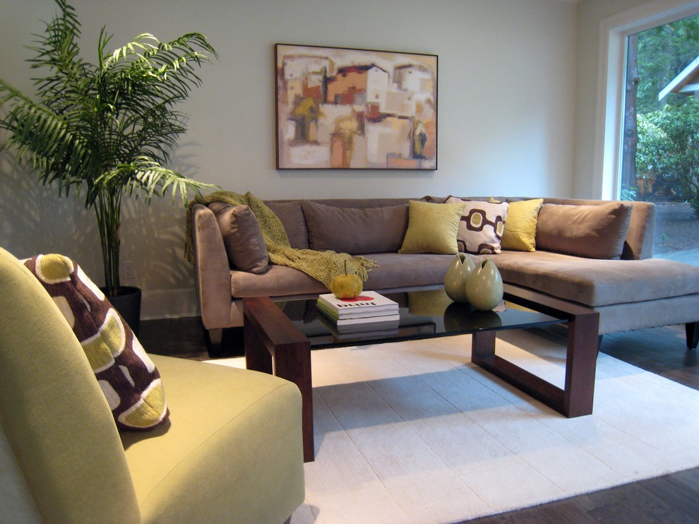 Soft Brown Modern Living Room Sofa