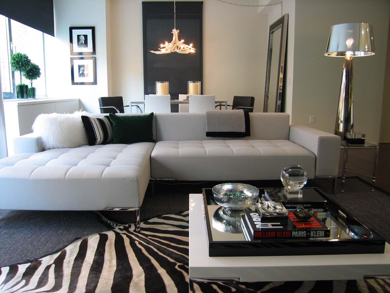Modern Living Room with Zebra Carpet