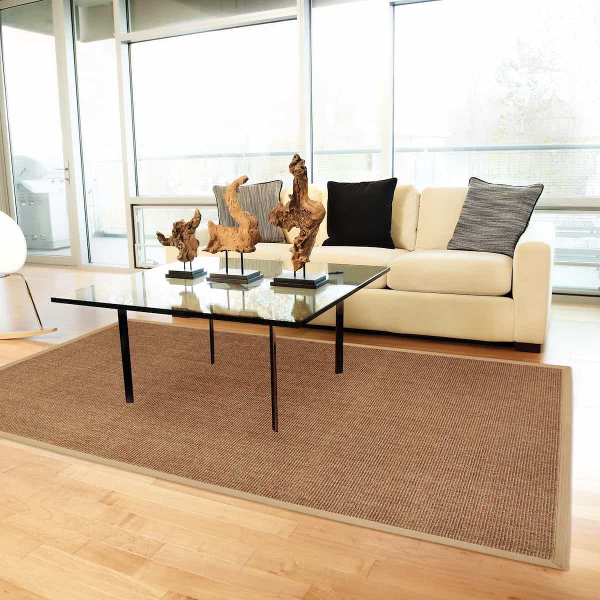 Sisal Rugs Brown Rugs Rectangle Area For Modern Apartment Living Room Rugs (View 4 of 15)