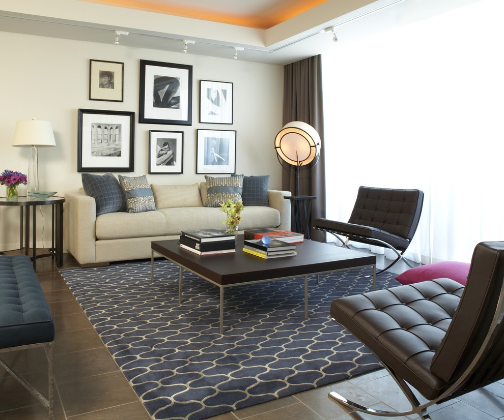 Modern Apartment Living Room With Blue Rug Flooring (Image 5 of 10)