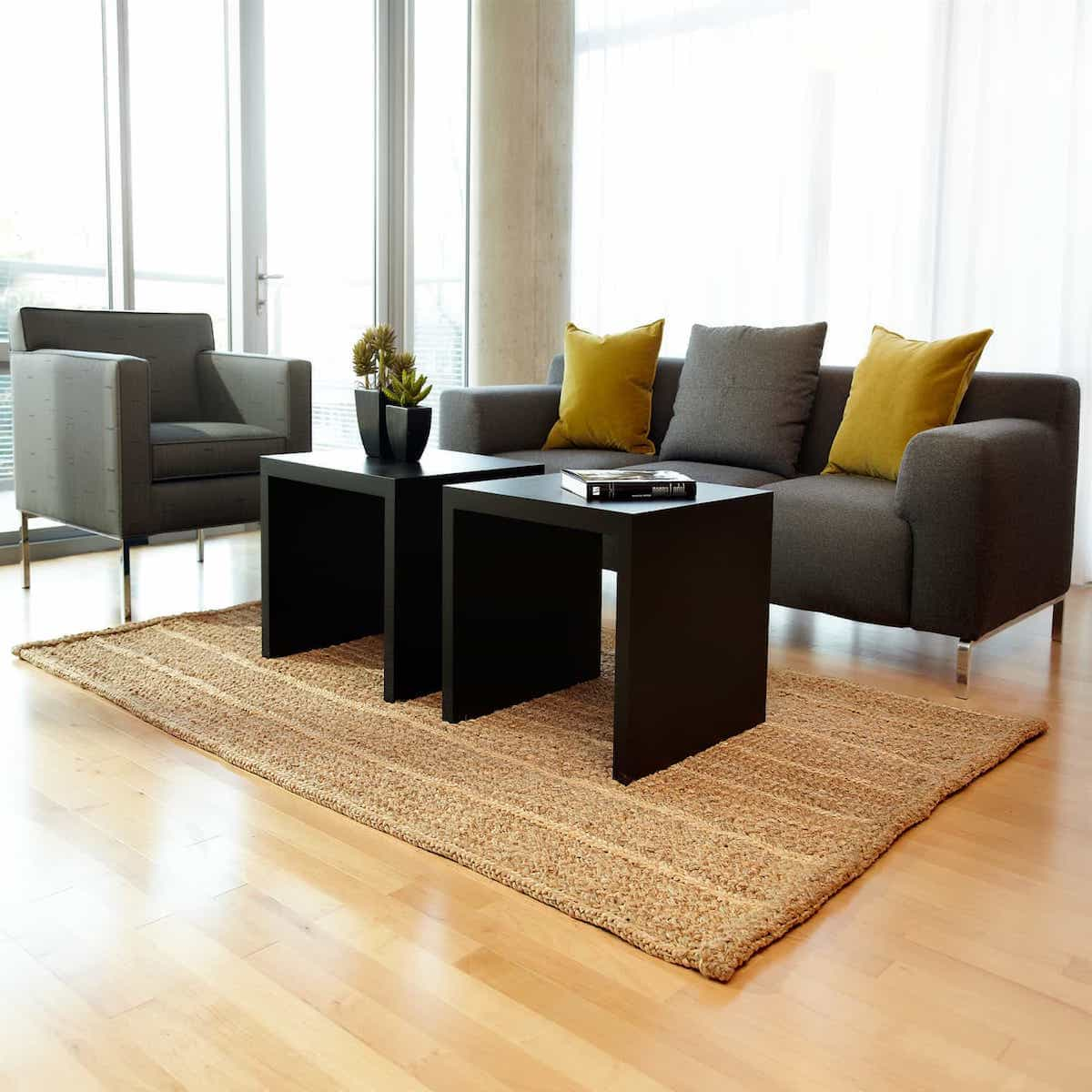 Square Sisal Rug Modern Style For Contemporary Apartment Decor (Image 15 of 15)
