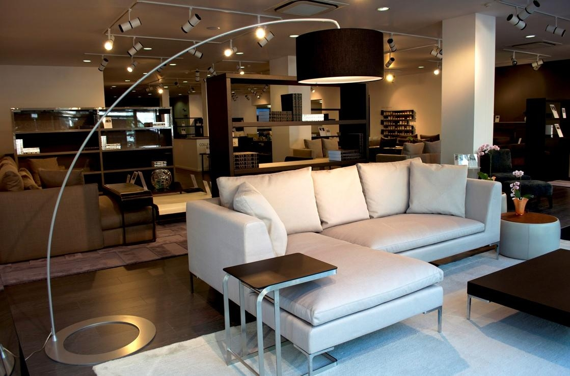 20 Modern Floor Lamps Design Ideas (With Pictures) – Hgnv Throughout Floor Lamp For Sectional Couch (View 9 of 15)