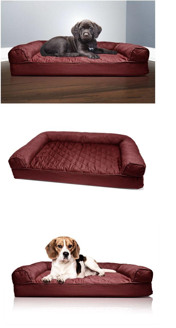 25+ Best Most Comfortable Sofa Bed Ideas On Pinterest | Queen For Most Comfortable Sofabed (View 20 of 22)