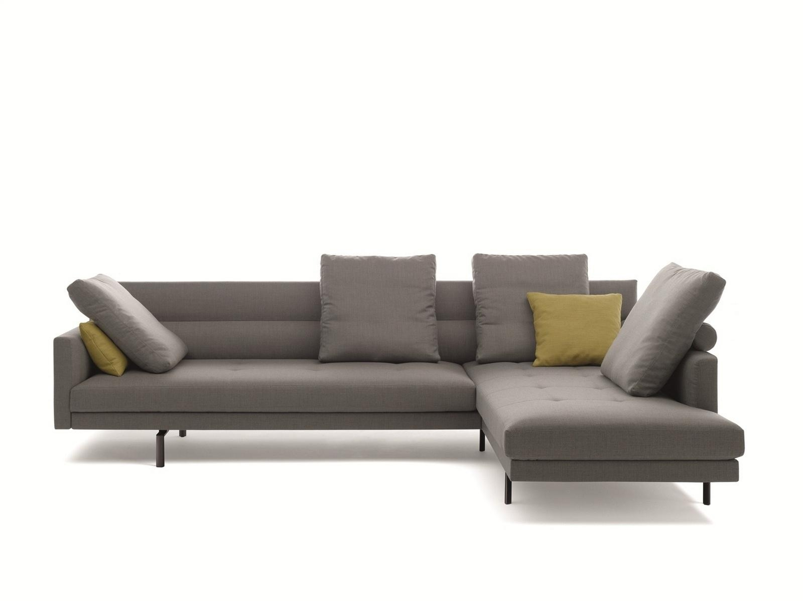 Amazing Walter Knoll Sofa With Leather Sofa Jaan Living Sofa Inside Knoll Sofas (Image 1 of 20)