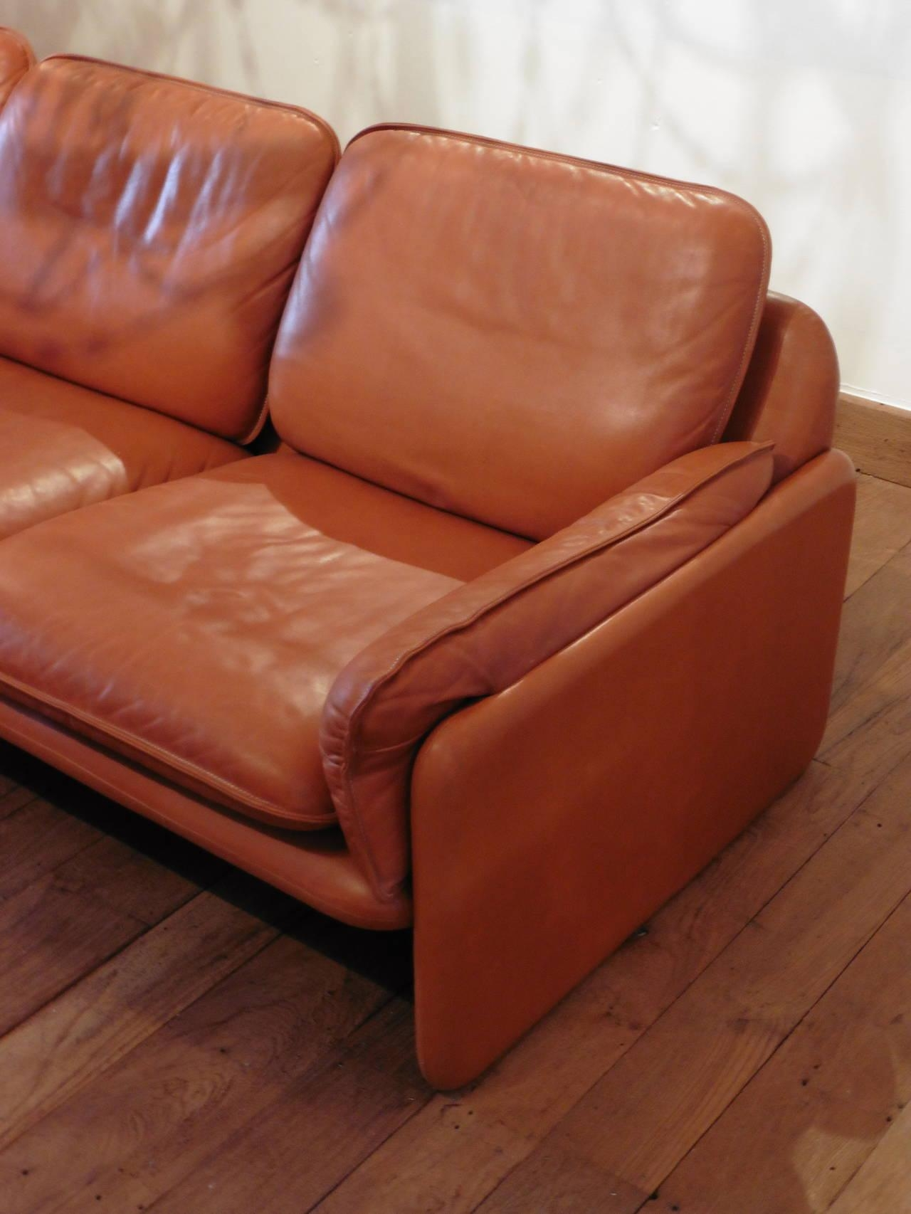 Aniline Leather Sofa With Design Gallery 8035 | Kengire Throughout Aniline Leather Sofas (Image 3 of 20)