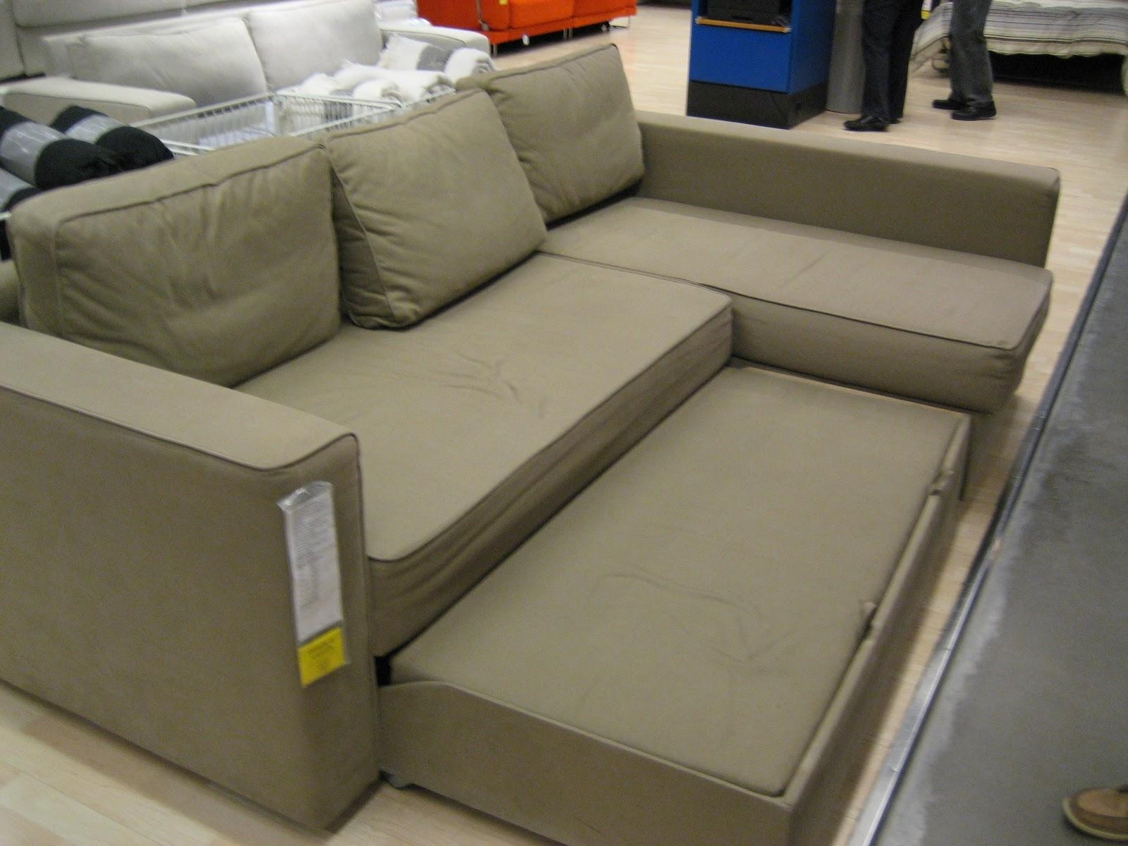 Backyard Sectional Sofa Pull Out Unforgettable Photo Concept Throughout Sofa Beds With Chaise Lounge (Image 3 of 20)