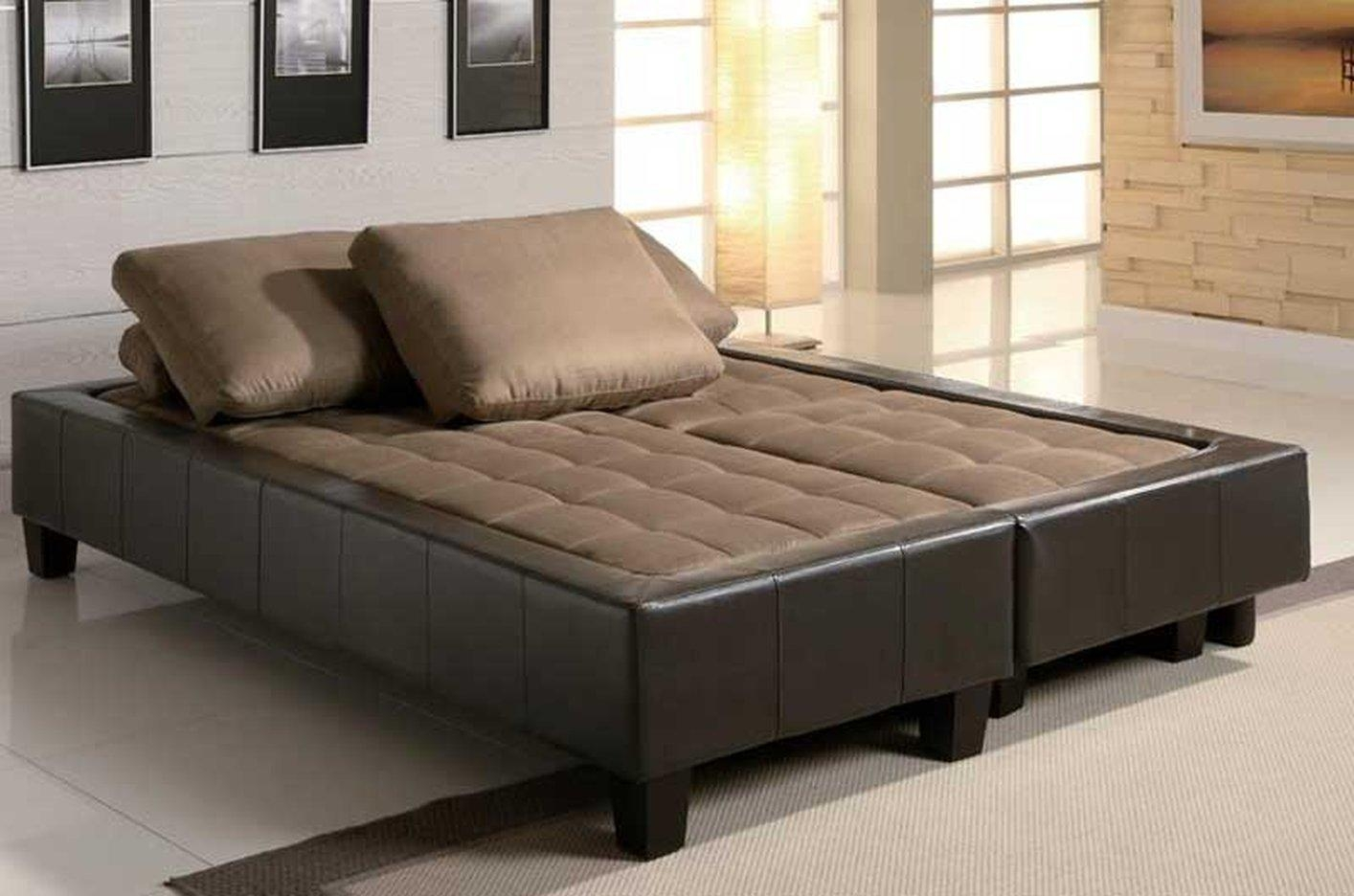 Bedroom: Sectional Sofa With Pull Out Bed For Pull Out Sectional (View 16 of 20)