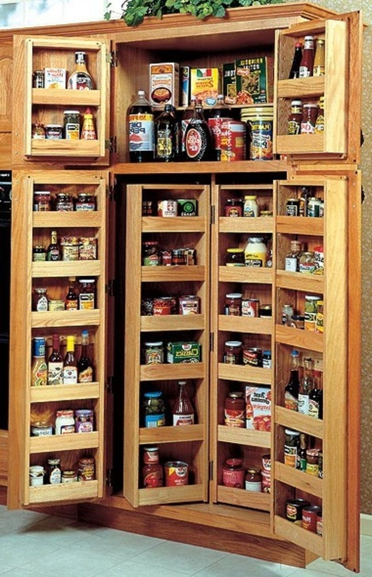 Best 25+ Pantry Cabinets Ideas On Pinterest | Kitchen Pantry Regarding Pantry Cabinets To Utilize Your Kitchen (Image 3 of 17)