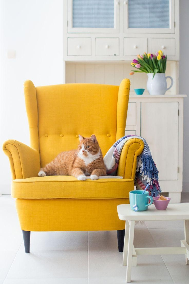 Best 25+ Yellow Chairs Ideas On Pinterest | Yellow Armchair With Regard To Yellow Sofa Chairs (Image 4 of 20)