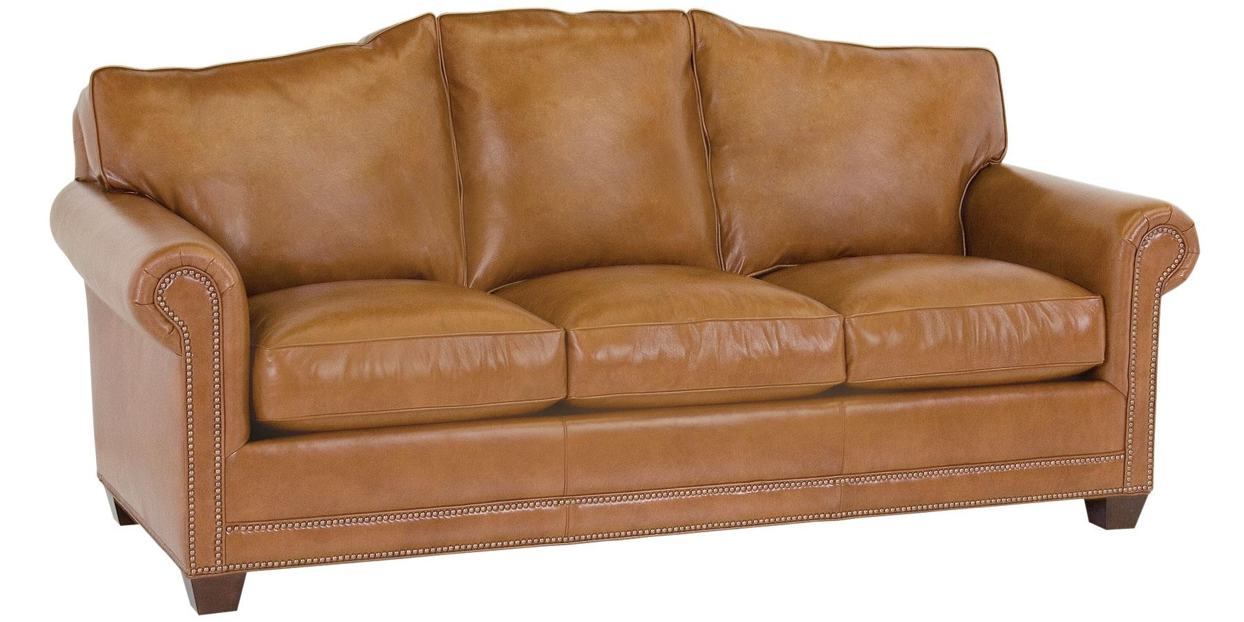 Featured Photo of Camel Color Leather Sofas