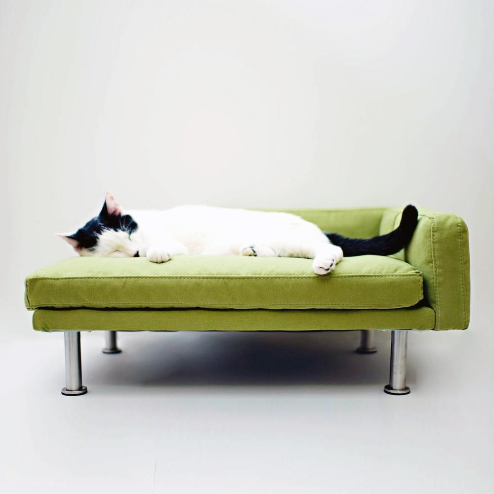 Cat Tunnel Sofa – Artdreamshome – Artdreamshome Intended For Cat Tunnel Couches (Image 4 of 20)