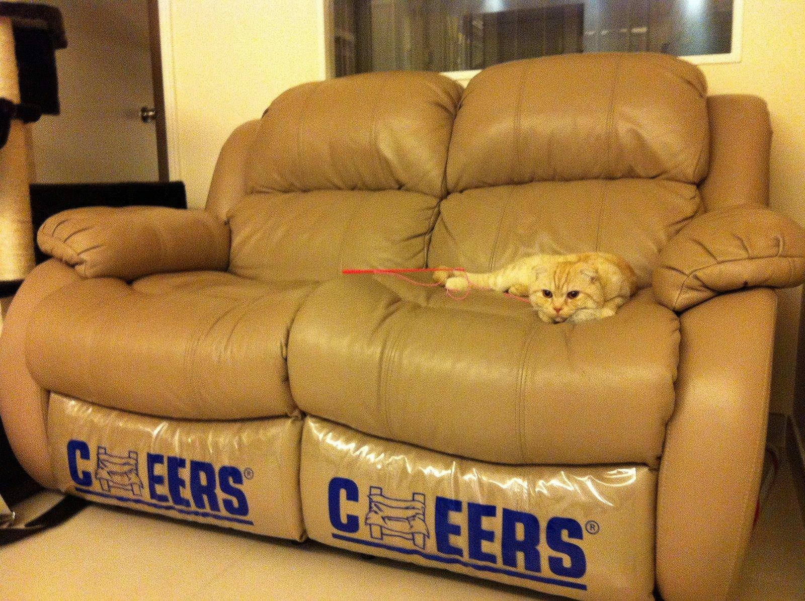 Cheers Sofa With Concept Photo 10825 | Kengire Regarding Cheers Sofas (View 8 of 20)