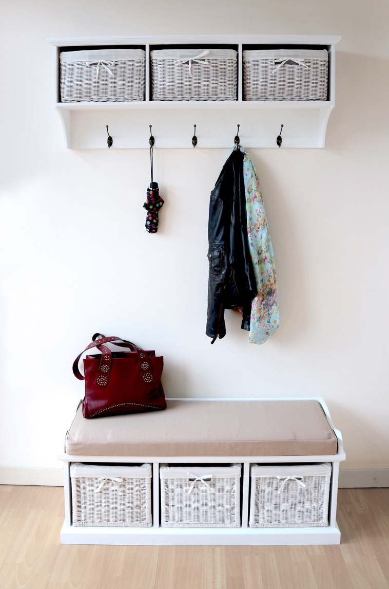 Decorations : Brilliant Entryway Storage Design With Wall Mounted In Coat Racks For Your Entryway (View 4 of 8)