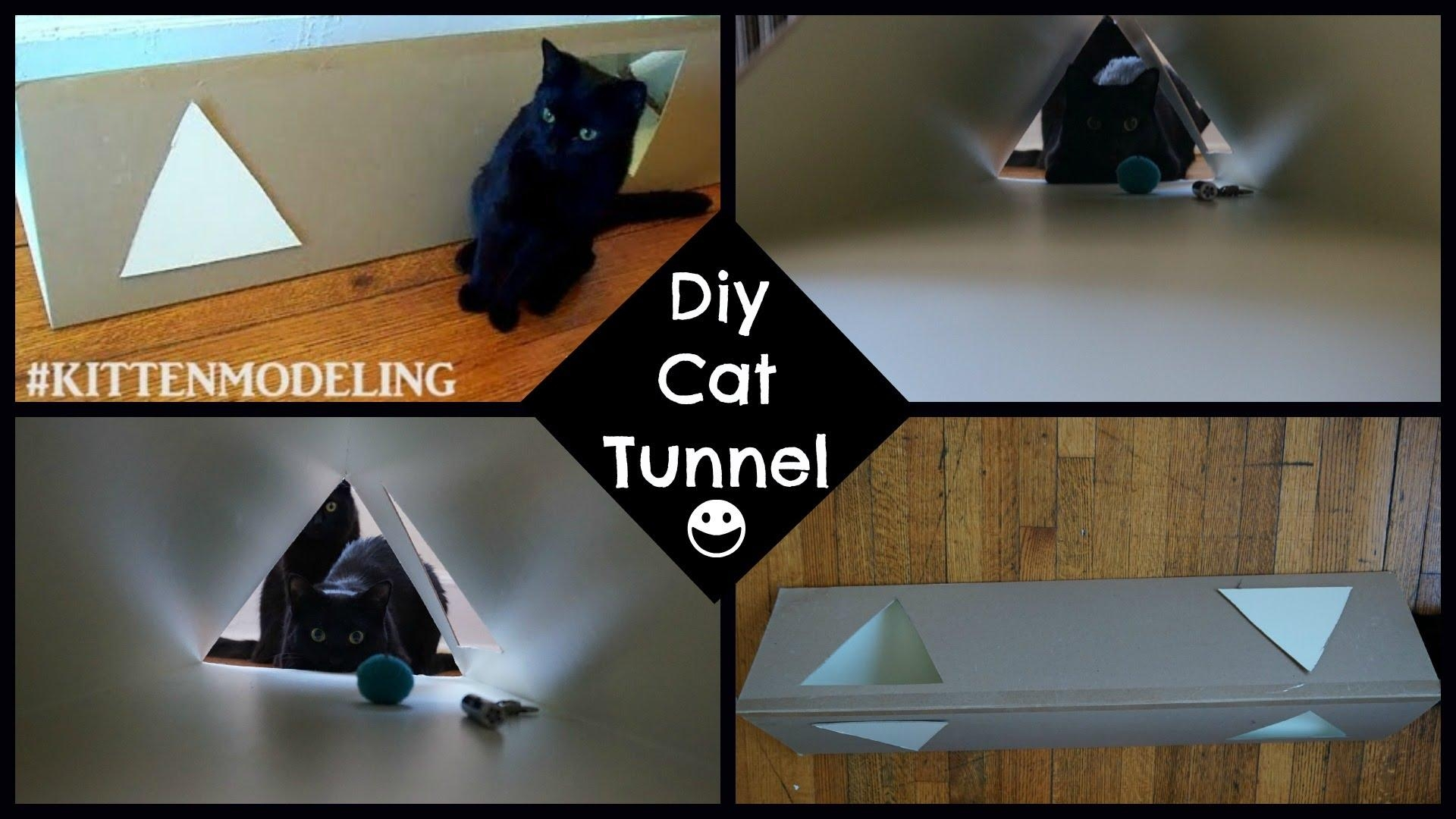 Diy Cat Tunnel – Youtube Intended For Cat Tunnel Couches (Image 20 of 20)
