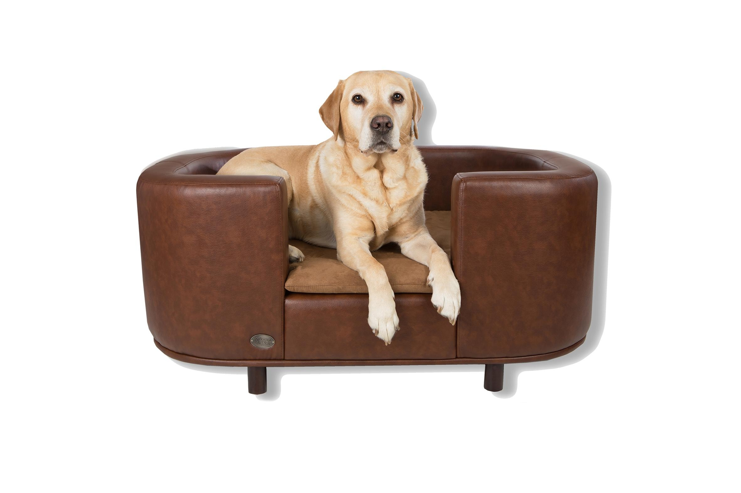 Dog Sofa Bed Chairs ~ Loversiq With Dog Sofas And Chairs (Image 4 of 20)