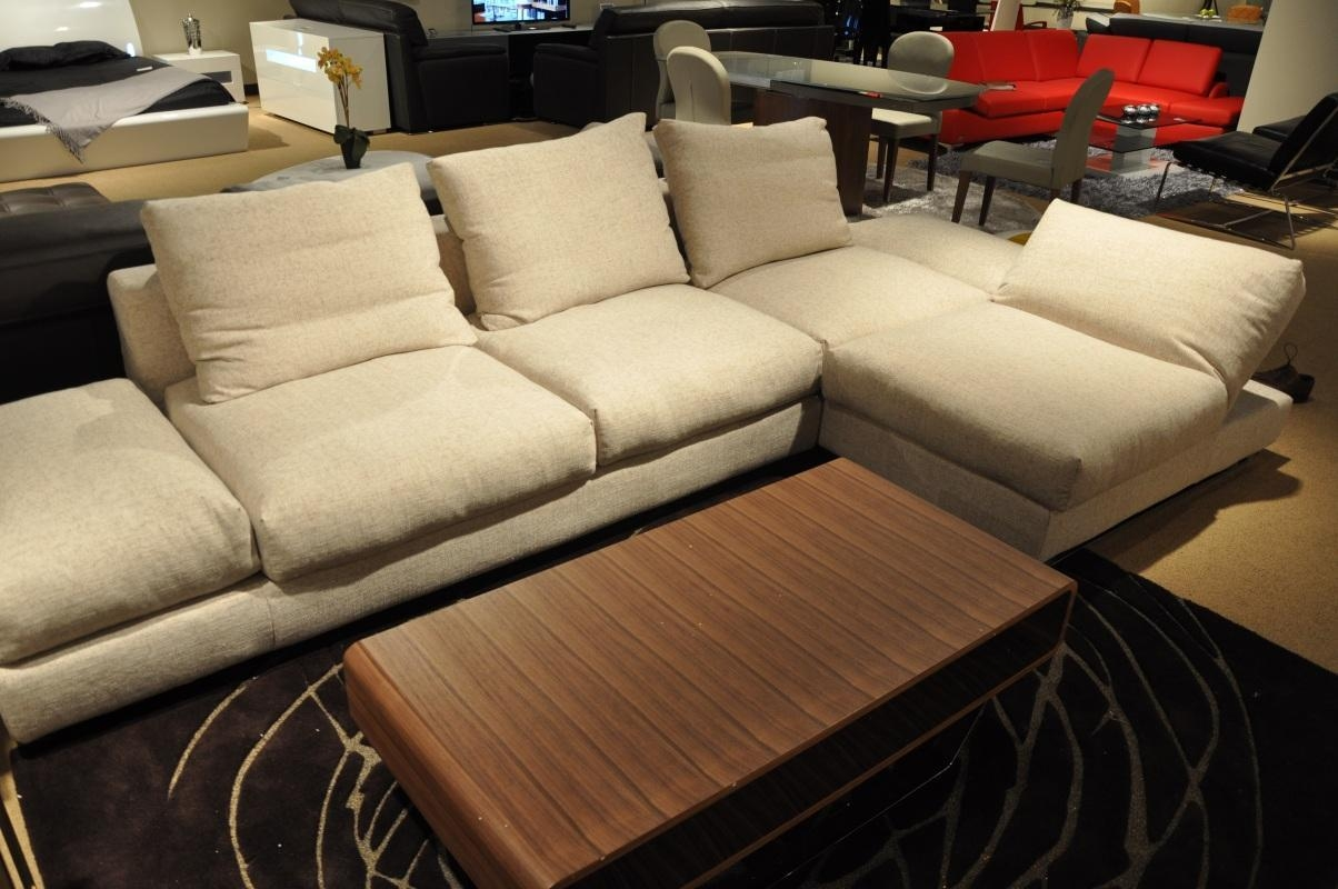 Featured Photo of Down Feather Sectional Sofa