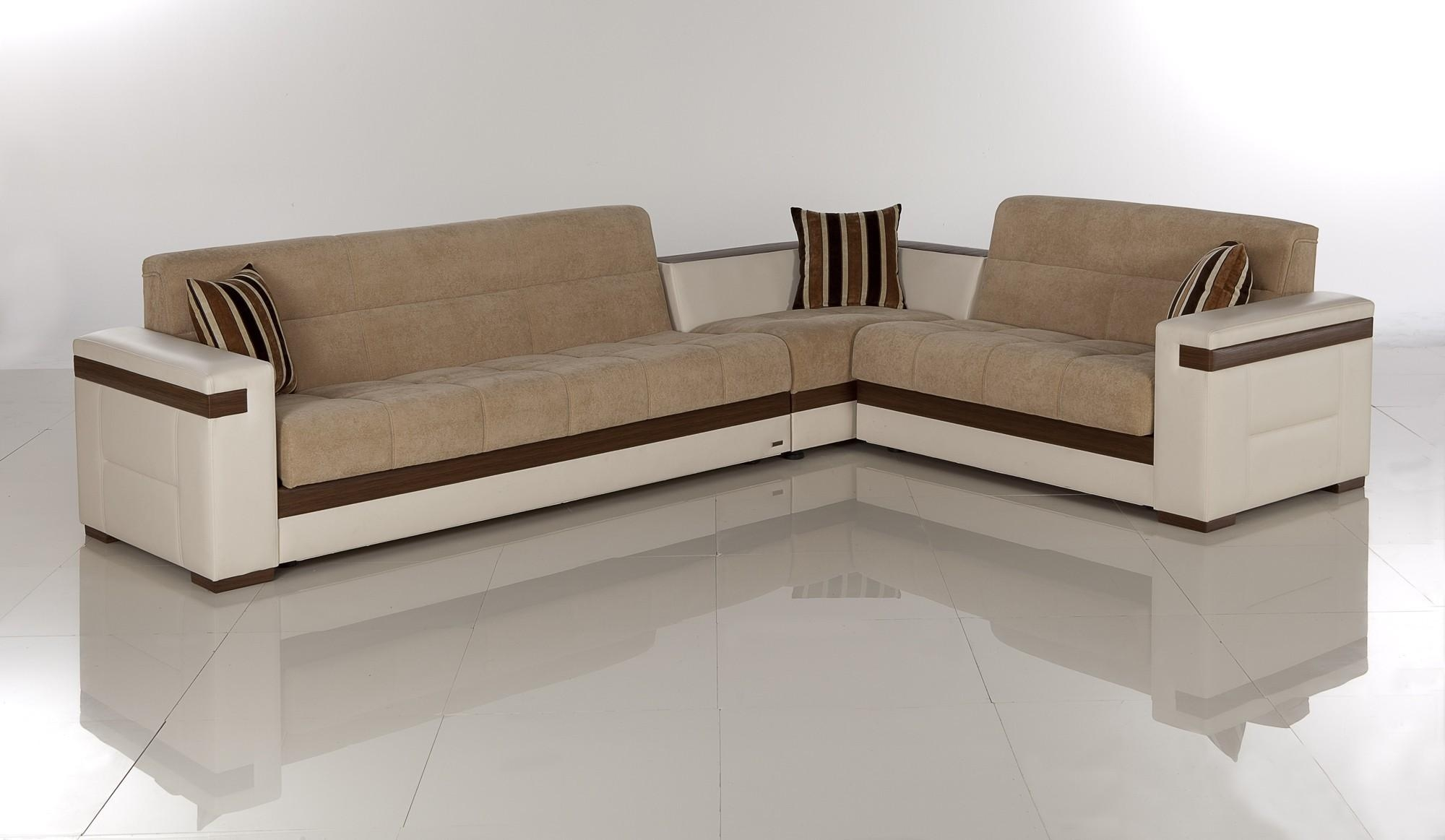 Furniture: Wondrous Alluring Sectional With Sleeper For Home Regarding Corner Sleeper Sofas (Image 9 of 20)