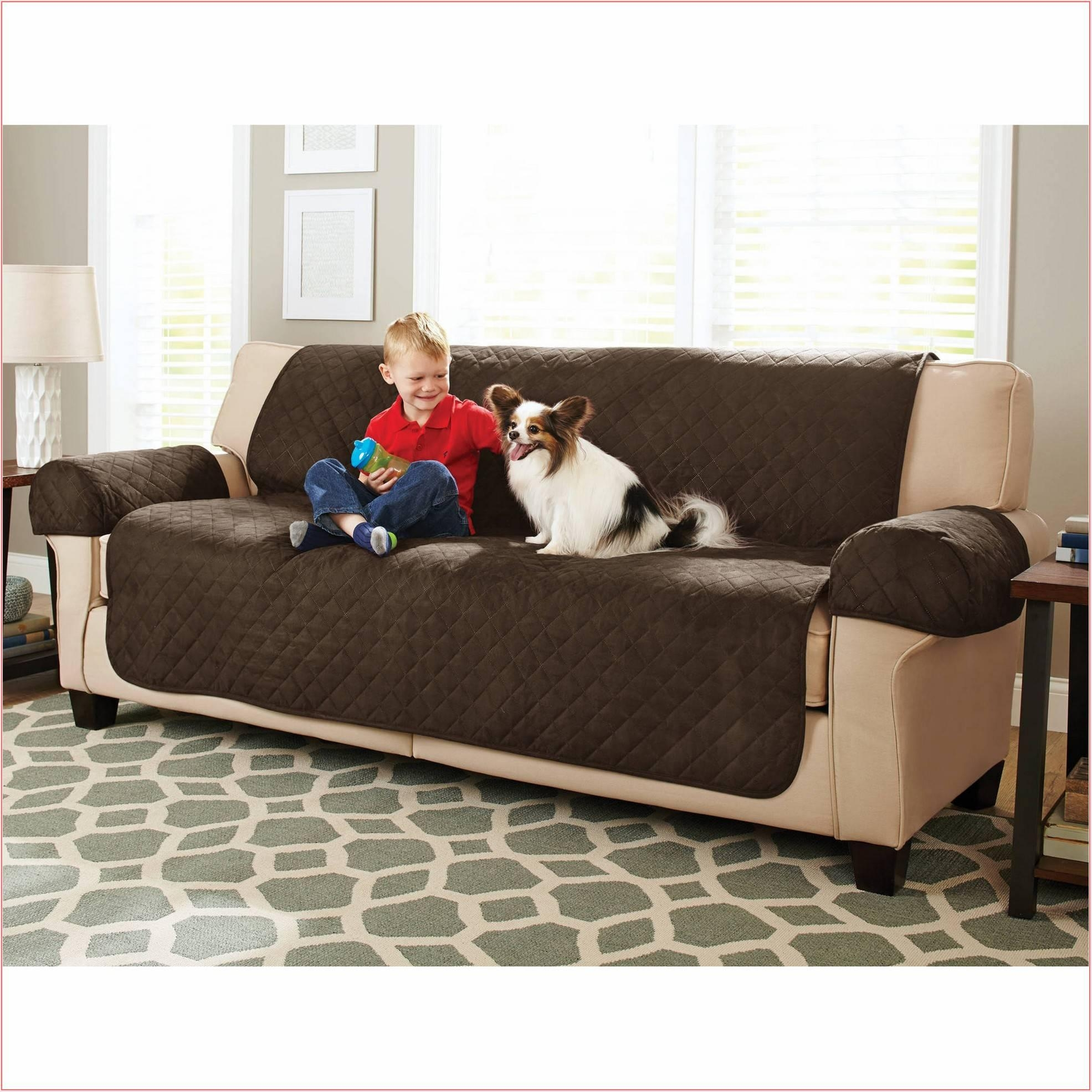 Good Cat Proof Sofa 54 For Sofas And Couches Ideas With Cat Proof Sofa With Regard To Cat Proof Sofas (View 6 of 20)