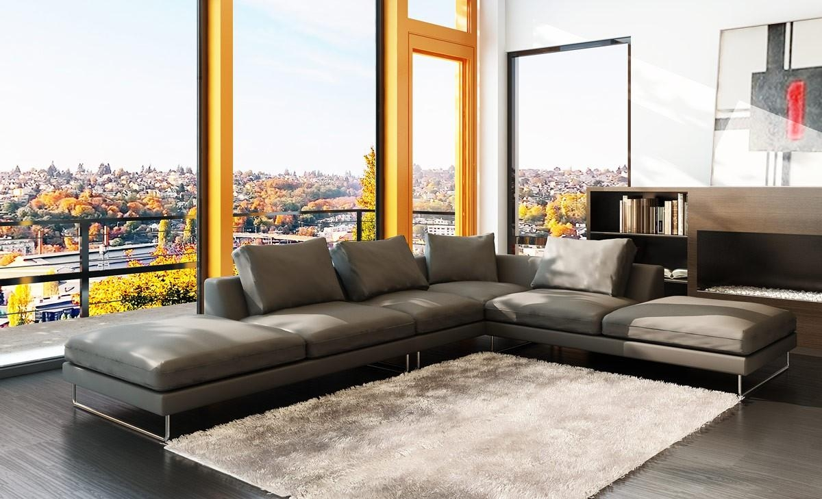 Modern Grey Leather Sectional Sofa With Regard To Low Sectional (Image 9 of 20)
