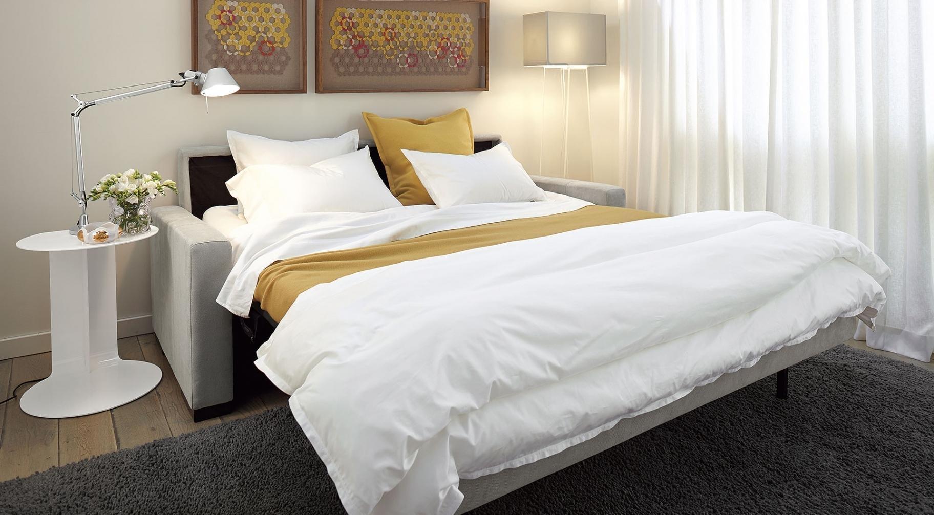 New Room And Board Sleeper Sofa | Sofa Ideas With Room And Board Comfort Sleepers (View 12 of 20)