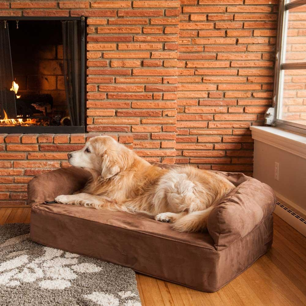 Replacement Cover – Snoozer Luxury Dog Sofa | Dog Couch Regarding Snoozer Luxury Dog Sofas (View 2 of 20)
