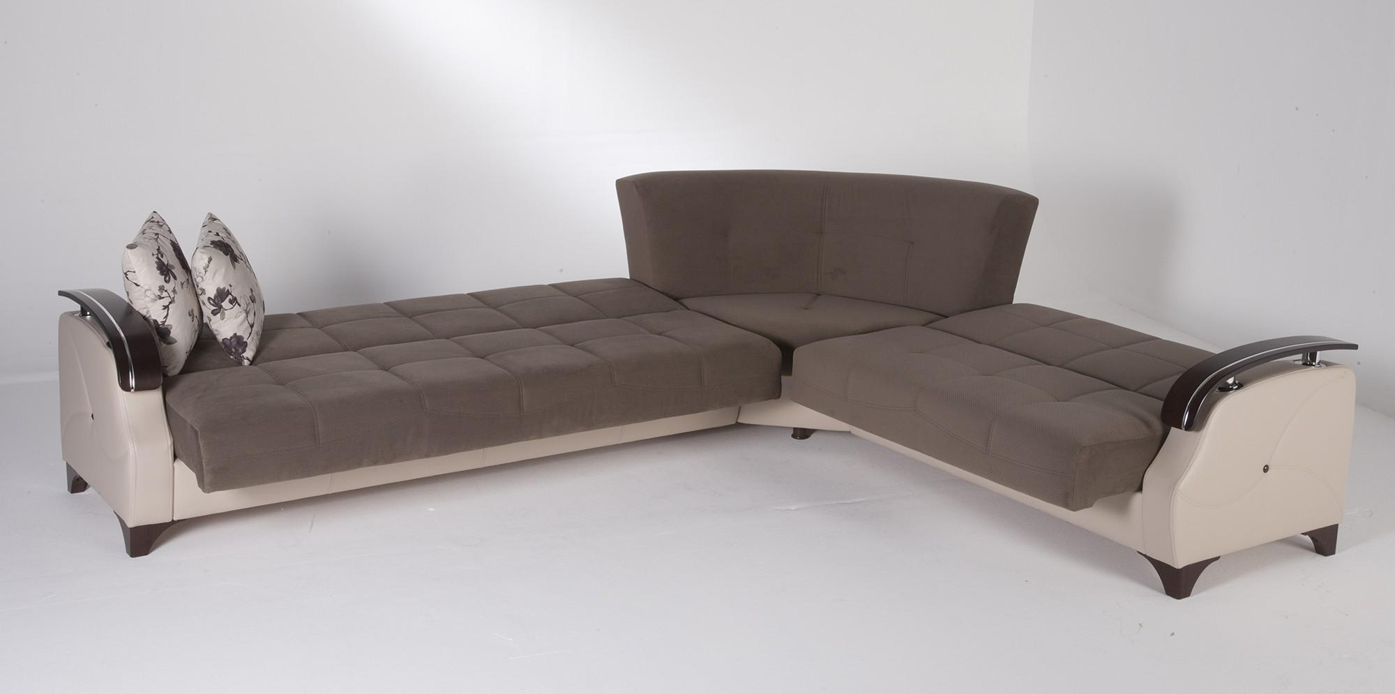 Sectional Sleeper Sofas For Sale – S3Net – Sectional Sofas Sale Within Sleeper Sectional Sofas (View 19 of 20)