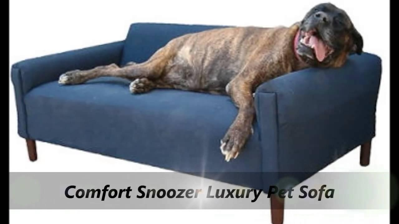 Snoozer Luxury Dog Sofa & Beds – Youtube Intended For Snoozer Luxury Dog Sofas (View 11 of 20)