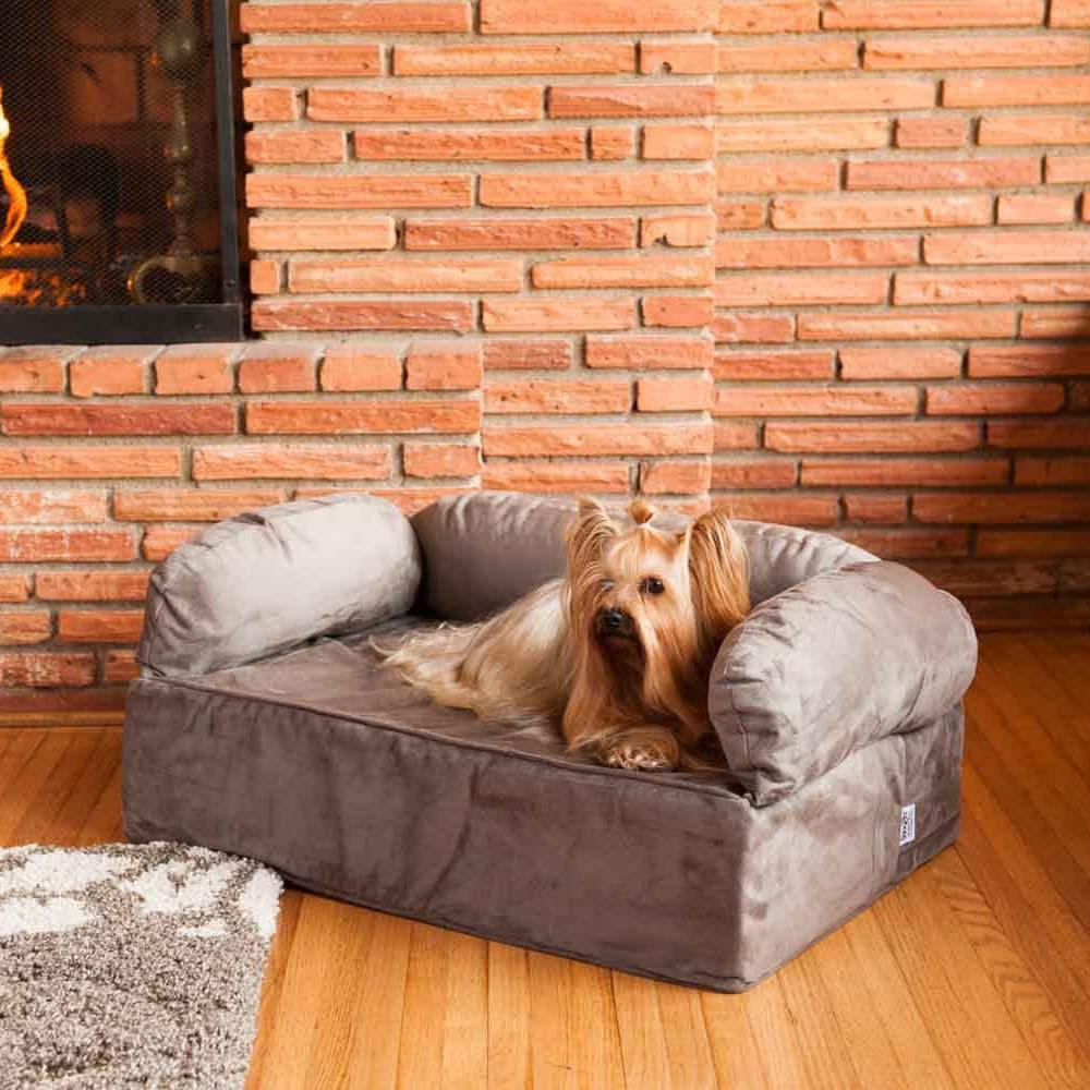 Snoozer Luxury Dog Sofa | Dog Couch | Microsuede Fabric Throughout Snoozer Luxury Dog Sofas (Image 6 of 20)