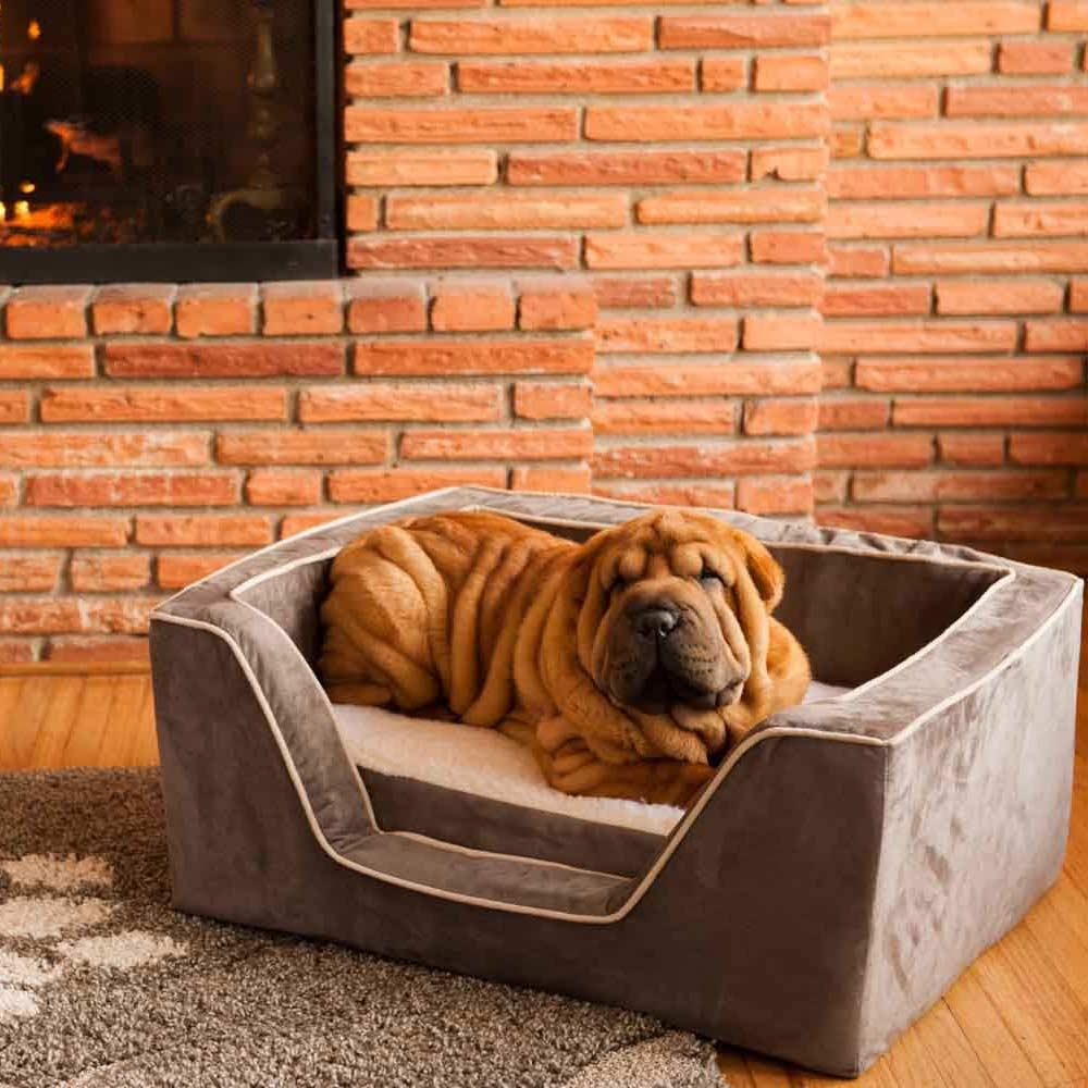 Snoozer Luxury Overstuffed Corner Dog Bed | 28+ Colors With Snoozer Luxury Dog Sofas (Image 11 of 20)