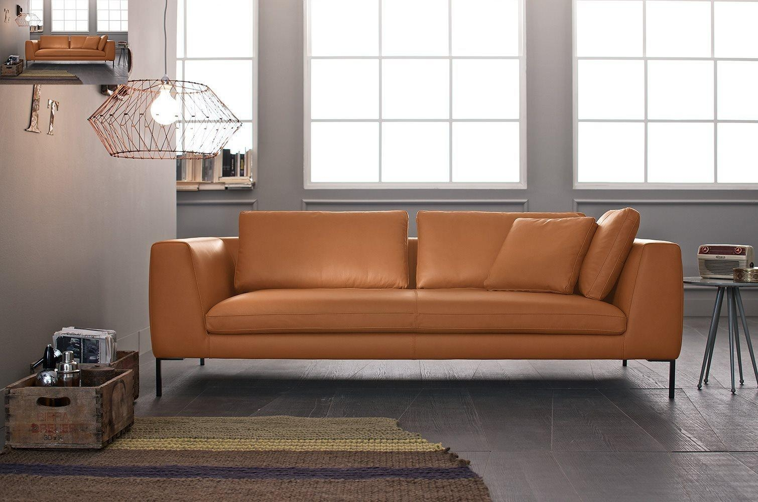 Featured Image of Collins Sofas