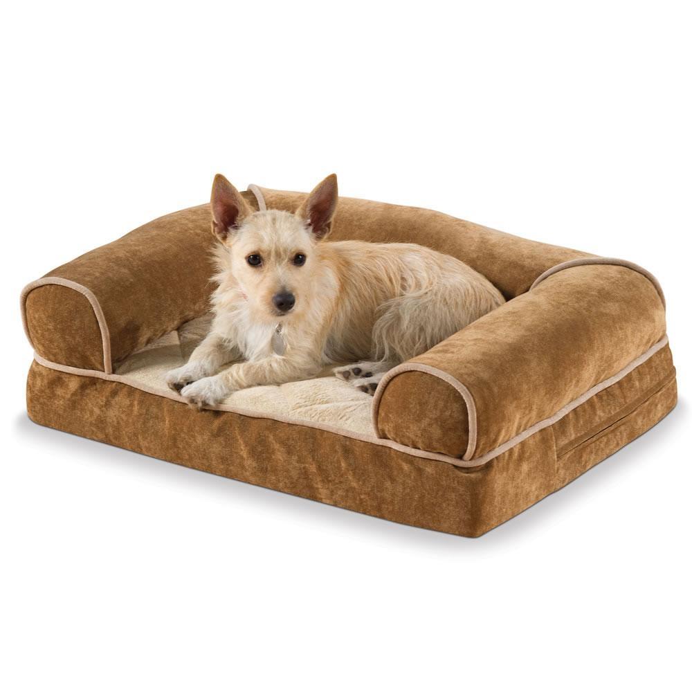 Sofas Center : 83896 Pt3 Ac Sl1500 V1495833045 Aspen Pet Sofa For Intended For Sofas For Dogs (View 18 of 20)