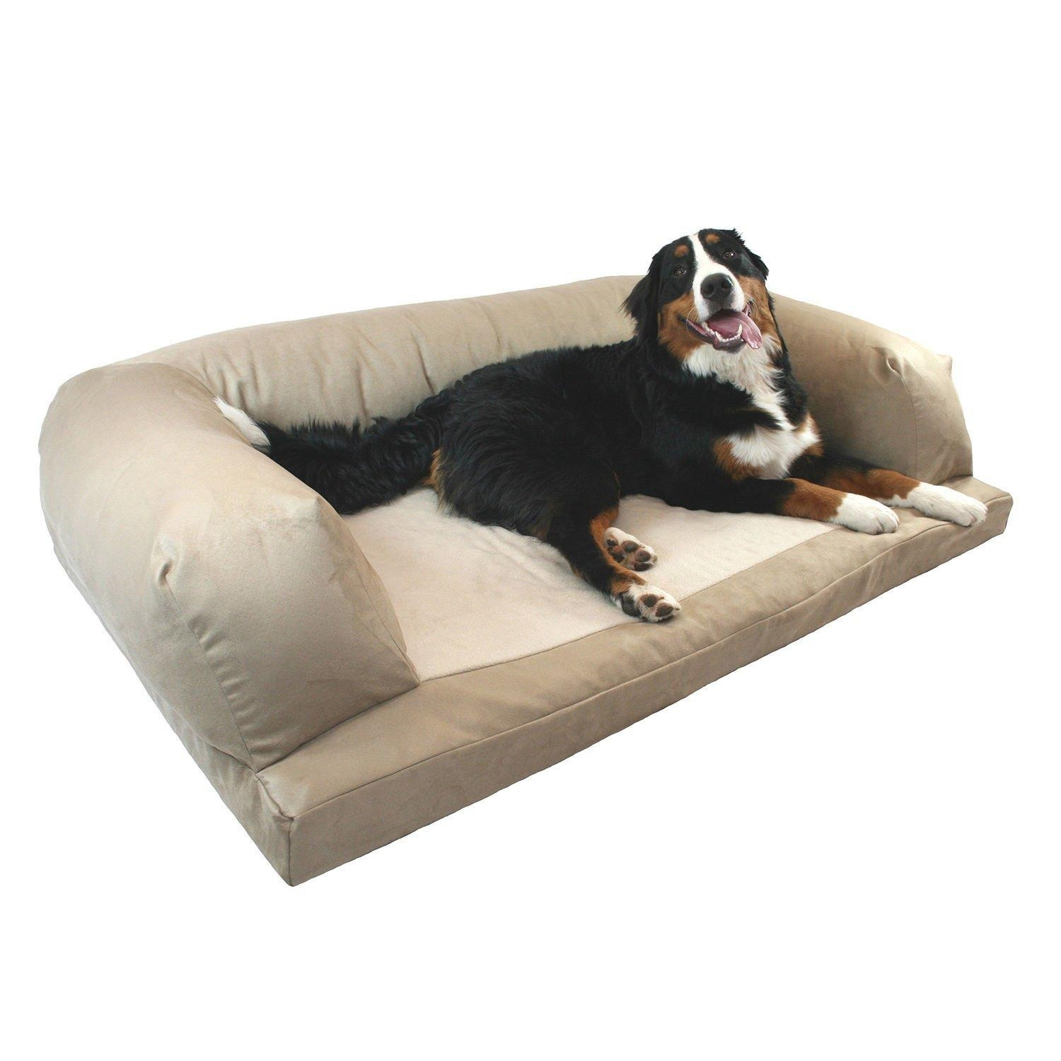 Sofas Center : Aspen Pet Sofa For Dogs Cats Color Varies Chewy Com Inside Sofas For Dogs (Image 11 of 20)