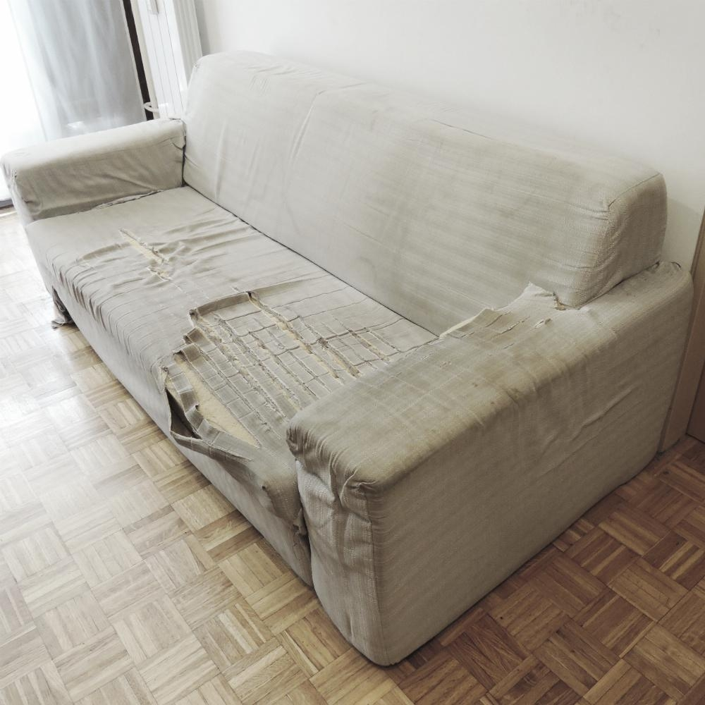Sofas Center : Beautiful Sofa With Washable Covers Pictures In Sofa With Washable Covers (Image 14 of 20)