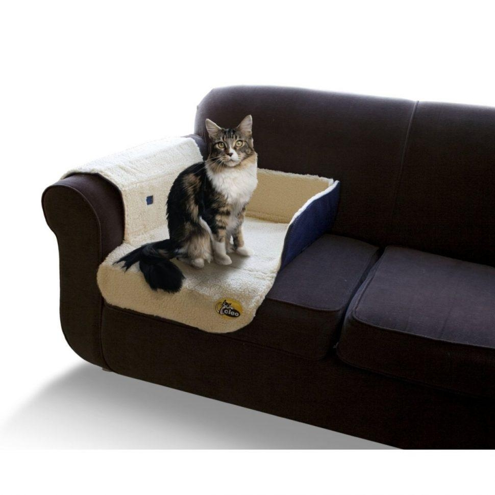 Sofas Center : Cat Friendly Sofa Cfs Round Shape Arm Sensational Regarding Cat Proof Sofas (Image 13 of 20)