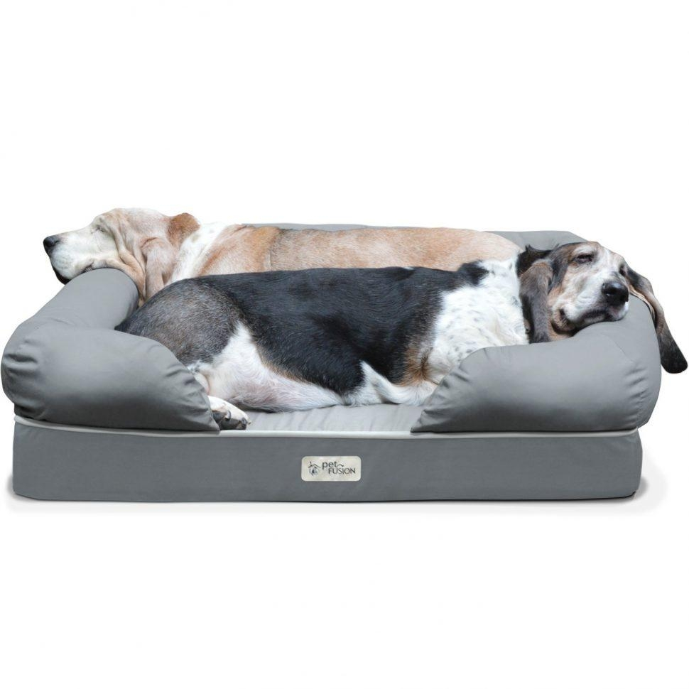 Sofas Center : Large Dogofa Extra Any Beds Onale Gray Cover Center In Dog Sofas And Chairs (View 19 of 20)